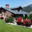 Ogłoszenia Dom i ogród